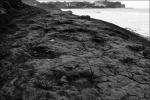 Huellas Dinosaurios Playa de la Griega de Colunga