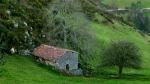 Onis Asturias