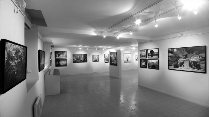 Galerie Espace Eqart à Marciac