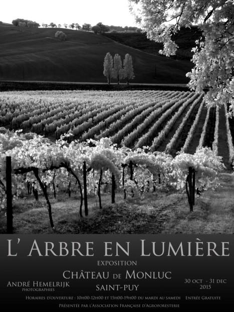 expo l'arbre en lumière Monluc Saint - Puy