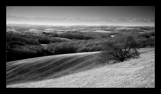 janvier-gers-france-andre-hemelrijk